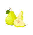 green fresh pear isolated on white background vector image