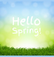 hello spring nature background with grass border vector image vector image