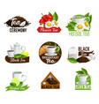 herbal black and green tea teabags icons vector image