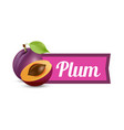 plums with caption isolated on white background vector image vector image