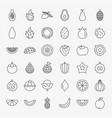 tropical fruit line icons set vector image