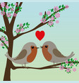 two cute robins vector image vector image