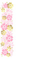 white background with stripe of flowers vector image