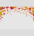 autumn falling leaves autumnal forest foliage vector image vector image
