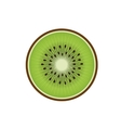 Delicious kiwi fruit isolated icon vector image vector image