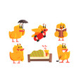 funny humanized chicken in various situations set vector image vector image