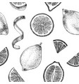 hand drawn seamless pattern with lemons vector image vector image