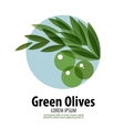 Olives logo design template harvest or food icon vector image vector image