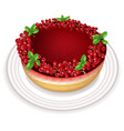 red currant cake realistic sweet tasty vector image
