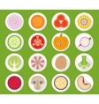 Vegetable icons with long shadow vector image