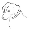black and white sketch of dog vector image vector image