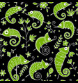 chameleon collection seamless pattern for your vector image vector image