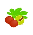 Coconut durian and palm leaves isometric 3d icon vector image