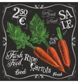 ripe carrots logo design template fresh vector image vector image