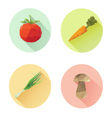 Set of flat design vegetables icons isolated vector image vector image