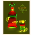 Bottle of tequila and shot with lime abstract vector image