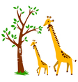 Tree and Giraffe vector image