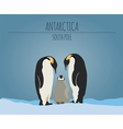 Antarctica South Pole graphic template vector image