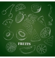 Background with fruit1-05 vector image vector image