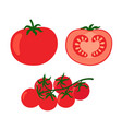 collection of fresh red tomatoes vector image vector image