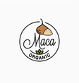 maca logo round linear logo superfood vector image vector image