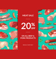 meat elements sale background vector image