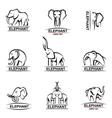 elephant icons set vector image