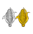 logo and symbol of corn for thanksgiving day vector image