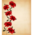Red roses on old paper background vector image vector image