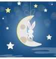 white Bunny moon night vector image