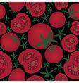 Tomato seamless texture vector image