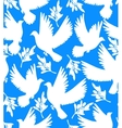 background with doves and olive branches vector image vector image