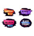 big sale 2017 black friday vector image
