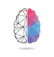 Brain abstract isolated on a white vector image vector image