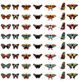 butterfly color set vector image vector image