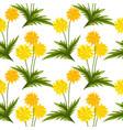 dandelion flowers seamless pattern vector image vector image
