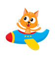 funny cat kitten pilot character flying on vector image vector image