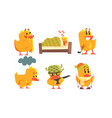 funny yellow humanized chicken cartoon characters vector image vector image