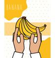 hands holding bananas fresh natural drawn image vector image vector image