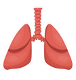 lungs icon flat style internal organs the vector image vector image