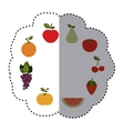 pattern sticker with fruits in circular shape vector image