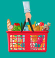 Plastic shopping basket full of groceries products vector image