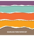 Seamless Torn Paper Concept vector image vector image