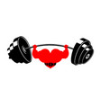strong heart and barbell powerful love athlete vector image vector image