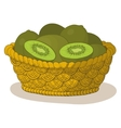basket with kiwi fruits vector image vector image