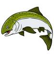cartoon salmon fish vector image vector image