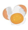 egg brocken vector image