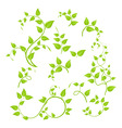 Green branches vector | Price: 1 Credit (USD $1)