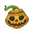 halloween pumpkin sketch engraving vector image vector image