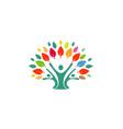 human tree logo vector image vector image